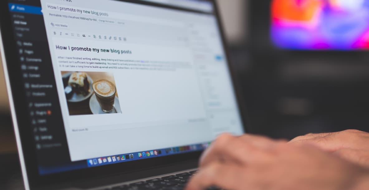 der Ultimative Wordpress SEO Guide fuer Anfaenger