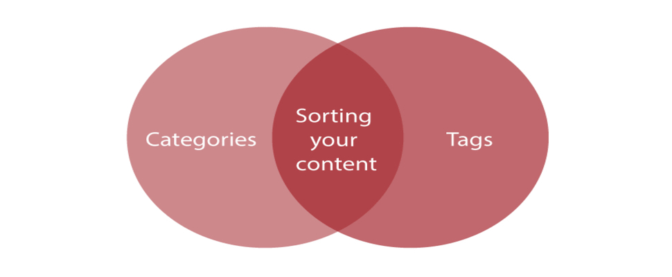 verwenden sie kategorien und tags in wordpress richtig